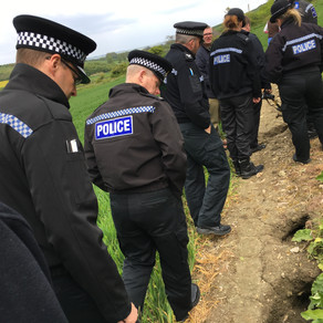Crimes against badgers are still happening – we need your reports