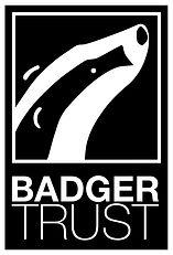 BadgerTrust-logo.jpg