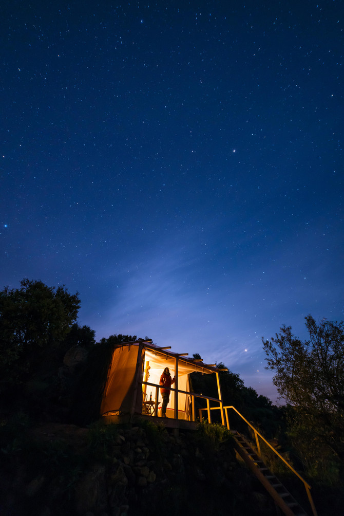 """A Project to """"Rewild"""" Europe, Brings a Safari-Style Camp to Portugal"""