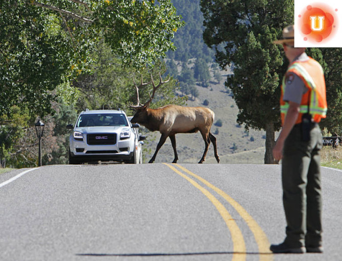 Is Ecotourism Helping or Hurting our National Parks?
