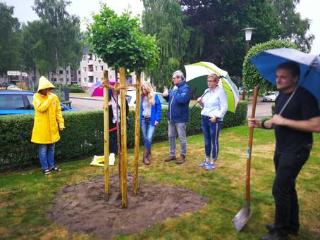 Rede / Speech:  Ein Ginko-Baum für Marten Spörel