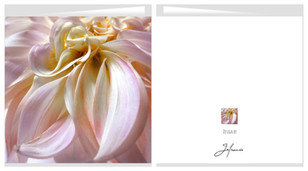 Card Dahlia 01 shop.jpg