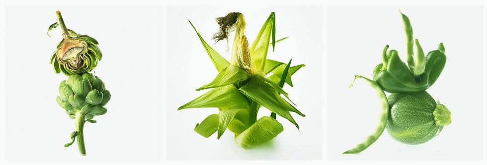 JF Vegetable Trypticha 01