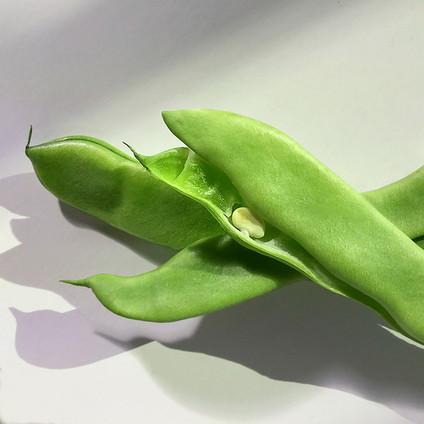 JF Green Beans 02