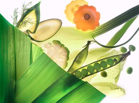 JF Vegetables 01