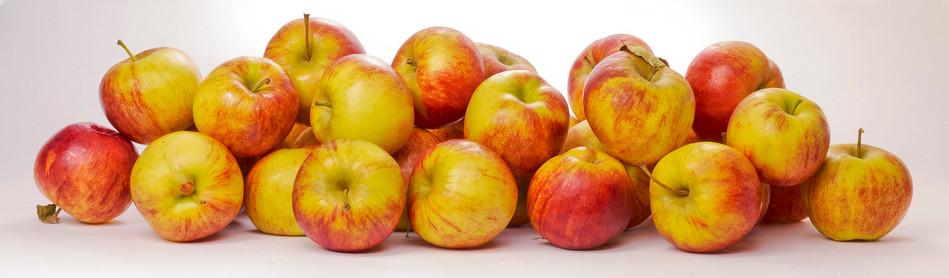 JF Apples 02