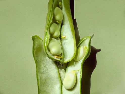 JF Green Beans 01