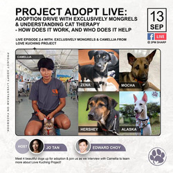 Project Adore Live - 13 Sep 2020