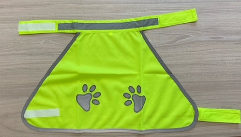 Pet Jacket - Glow in the Dark