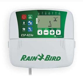 prog rain bird.JPG