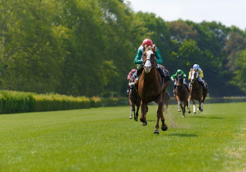 Several racehorses with jockeys during a