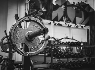 Propel Fitness Dunedi Weights