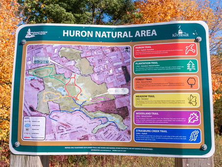 Get Out and Move: Huron Natural Area Hikes