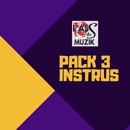 Pack 3 Instrus - MP3 - Sans signature vocale