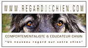 logo regarddechien.png