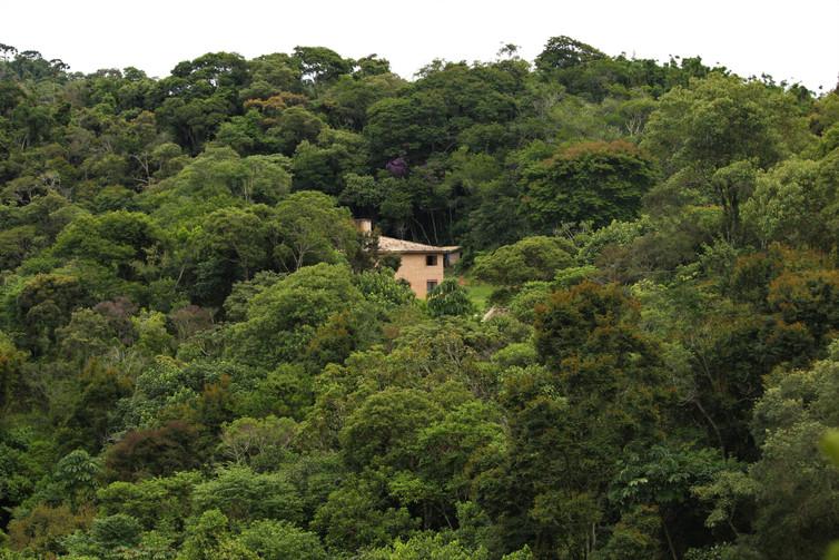 Mata Atlântica - Serra da Mantiqueira