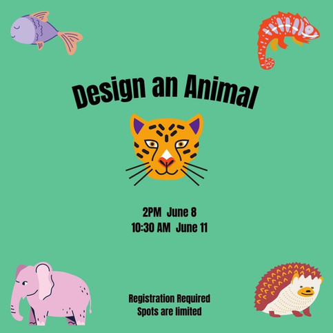 Create an Animal.jpg