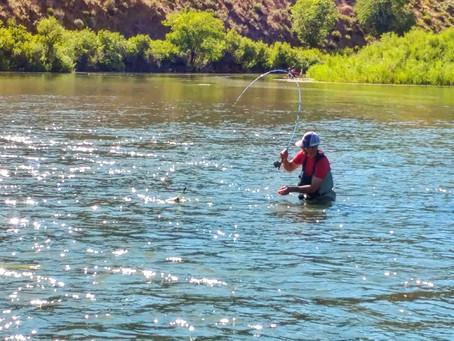 Owyhee River Fishing Report 06.25.17