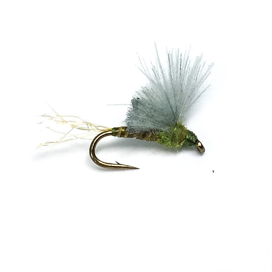 BWO CDC Wing Sparkle Emerger