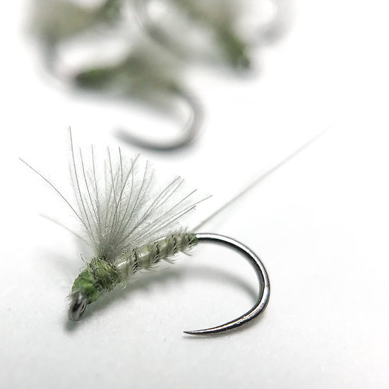 BWO CDC RS2