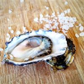 Pacific Gold Oysters