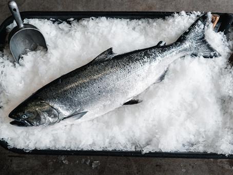 LAST CHANCE, STOCK UP - Fresh Wild California King Salmon