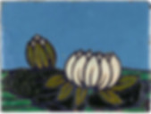 Hartford Faience Tile Two Water Lilies