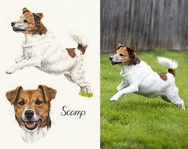 photoshoot artist photographer pet dog