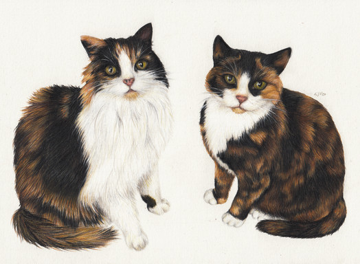 Meggie and Debbie A4