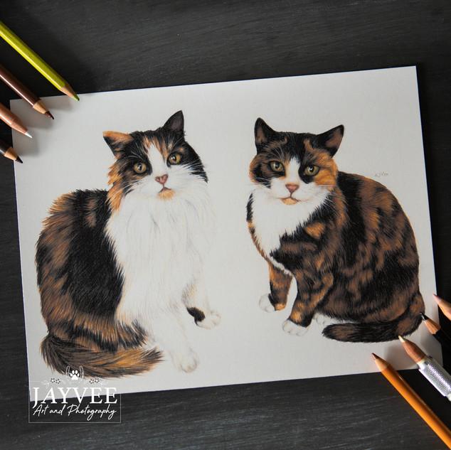 Debbie & Meggie, A4