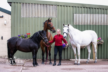 Sharon & Horses