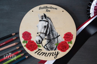 Timmy, Plywood 20cm, extra imagery & text