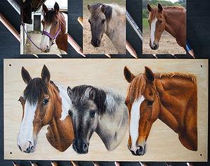 name plate testimonial custom horse equine