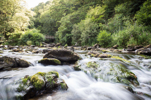 Devon Rivers Meet