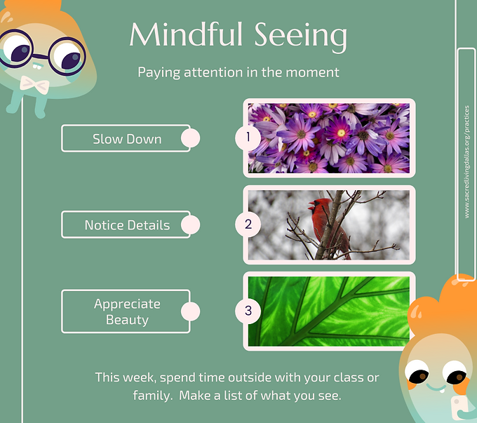 MindfulSeeing.png