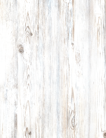 Loggers Background (1).png