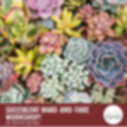 Copy of SUCCULENT MAKE-AND-TAKE WORKSHOP