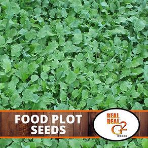 Food Plot Seeds.jpg
