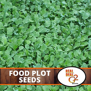 Food Plot Seeds.jpg