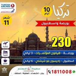 بورصة واسطنبول * شهر 11 / 2020 - 10 أيام - 230 دينار