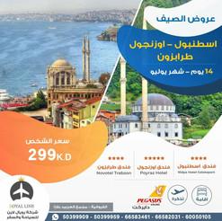 تركيا * شهر 7 / 2021 - 14 يوم - 299 دينار