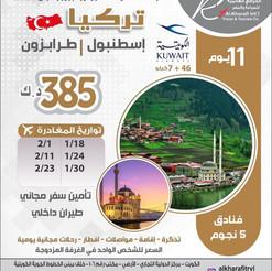 تركيا * شهر 1 و 2 و 3 / 2021 - 11 يوم - 385 دينار