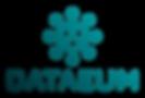 logo-dataeum-gradient-01(3).png