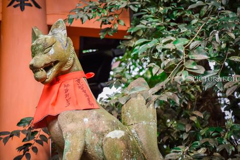 JAPON2017__0041.jpg