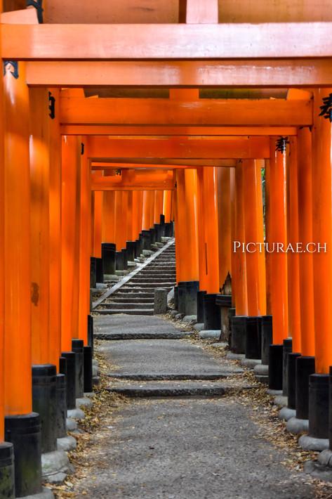 JAPON2017__0043.jpg