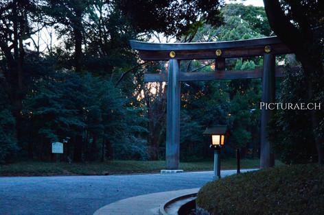 JAPON2017__0009.jpg