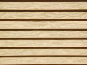 Exterior Siding:  Out Dated And Not Cost Efficient.