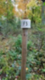 Trail Photos.jpg