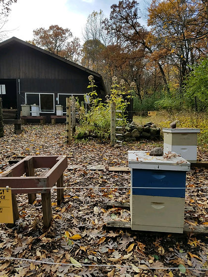 Apiary and Honey House.jpg