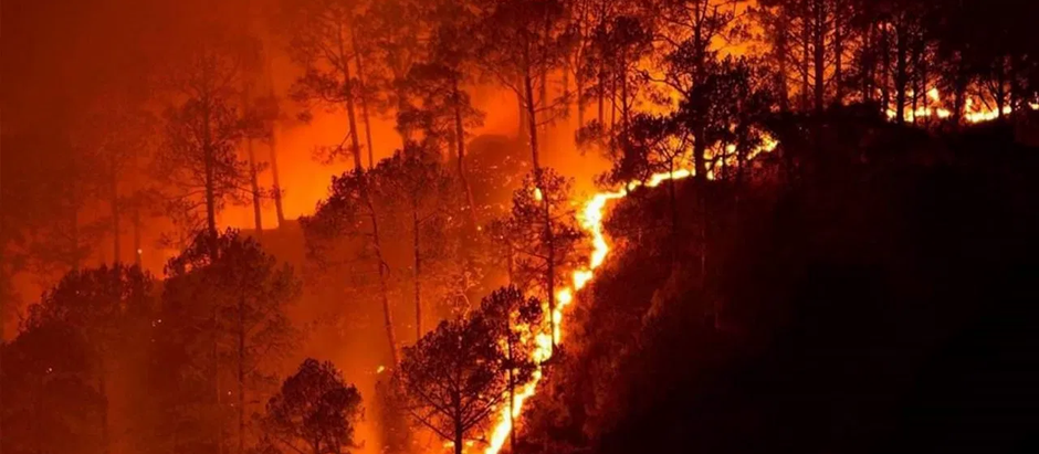 Doubtful About Climate Change? Enter the California Wildfires